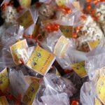 INGOH celebra festejos juninos com amendoim e pipoca para colaboradores